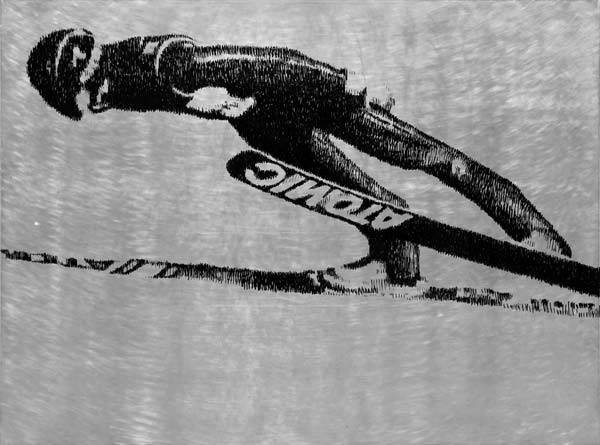 Skakač, 2010, industrijska boja na aluminijumu, 92x124cm