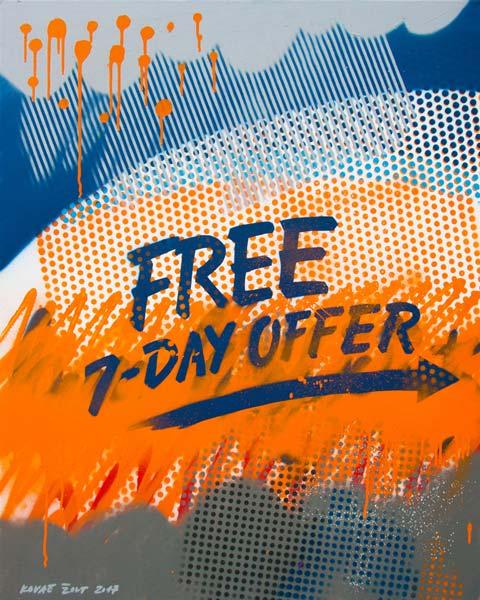 Free 7 Day Offer, 2017, spray on canvas, 100x80cm
